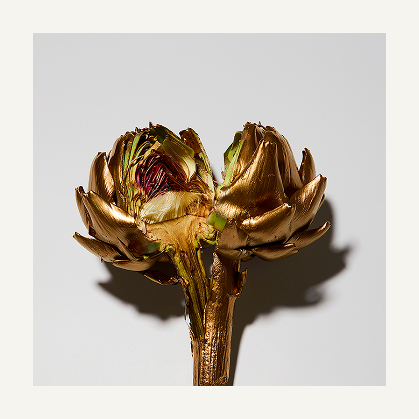contemporary art limited edition photography subject gold artichoke