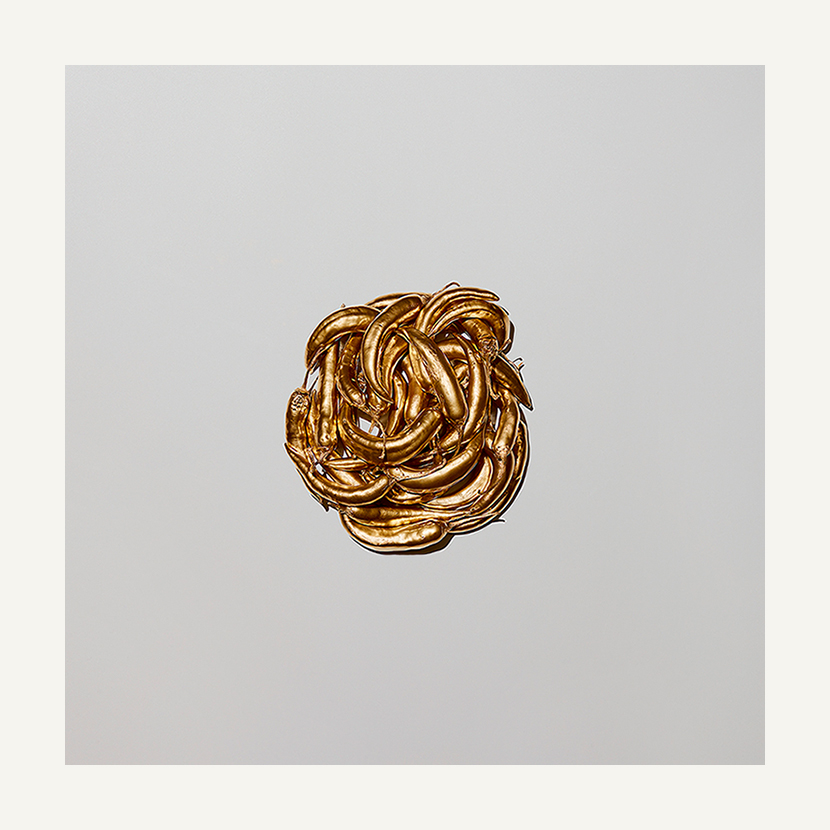 contemporary art limited edition photography subject gold chillies