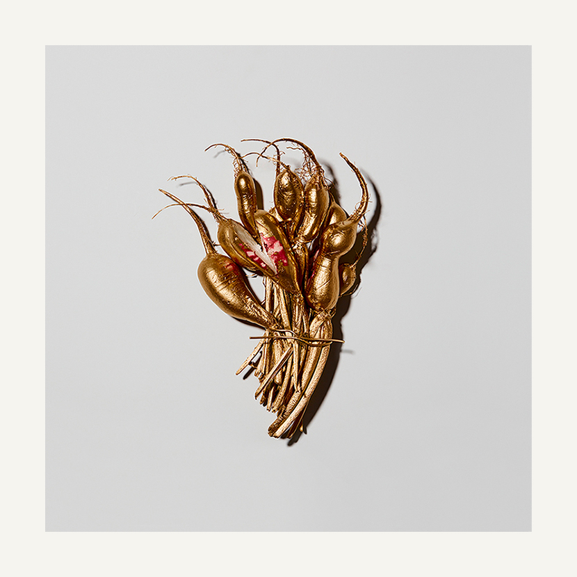 contemporary art limited edition photography subject gold radish