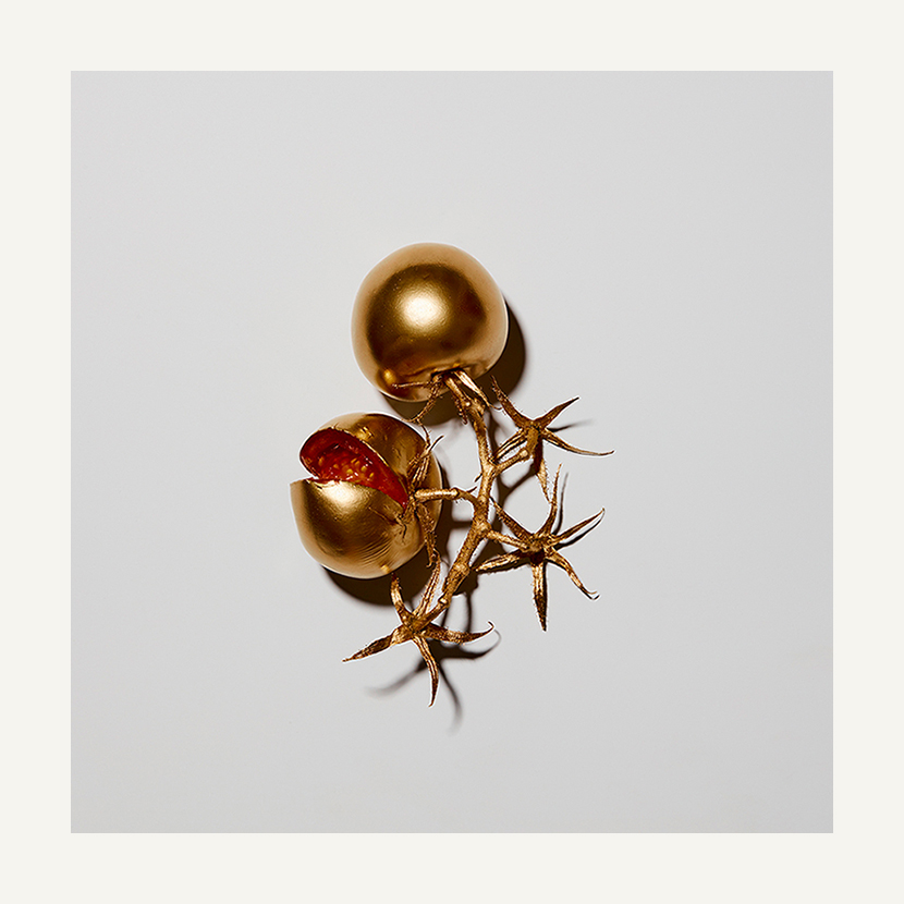 contemporary art limited edition photography subject gold tomatoes
