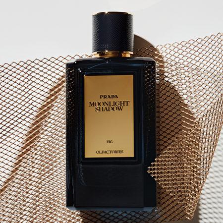 fragrance perfume stilllife